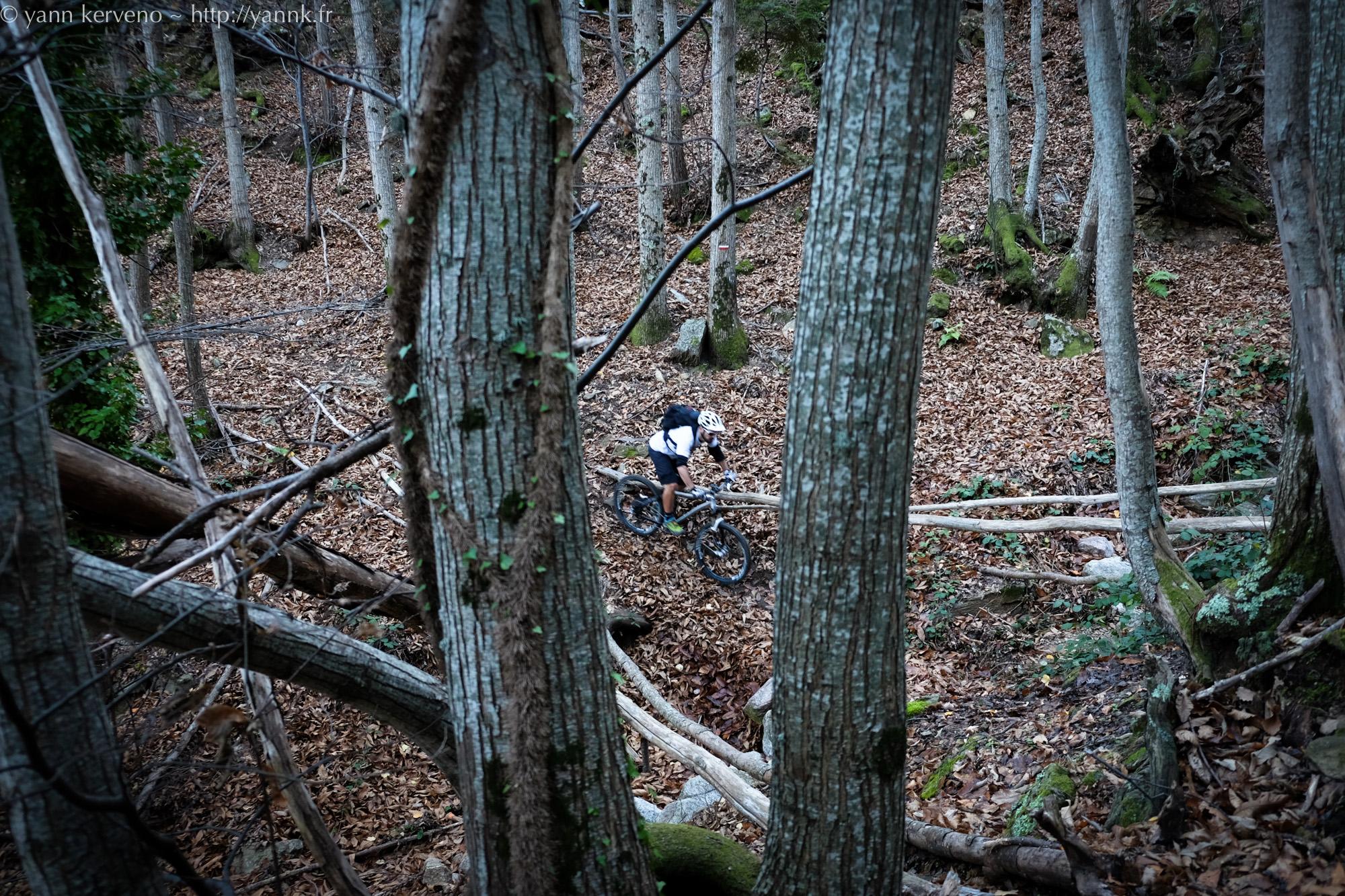 Mountain bike et autres choses for Douleur interieur cuisse droite