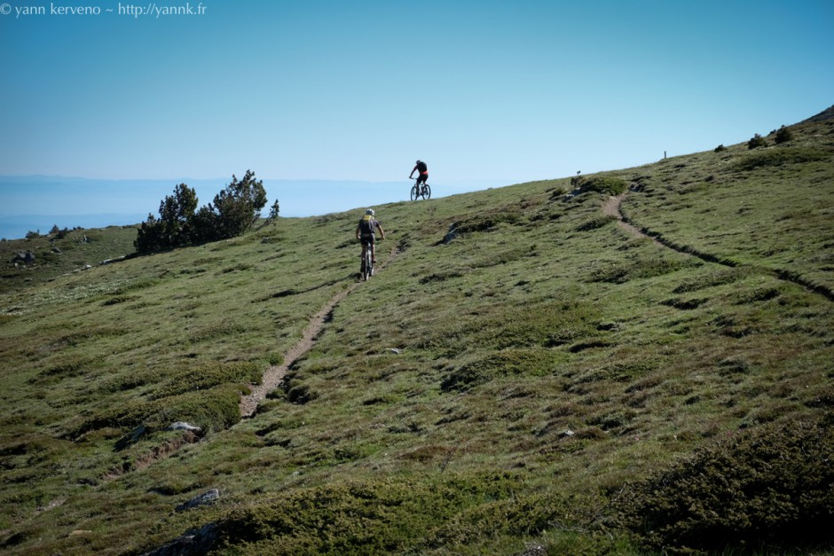 yannk.fr-summer2015-1